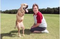 Dog Talk 638