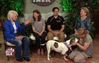 Dog Talk 717