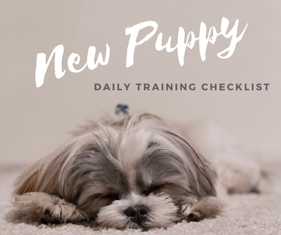 New Puppy Daily Checklist