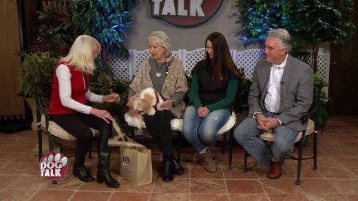 Dog Talk 808