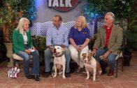 Dog Talk 834