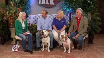 Dog Talk 840