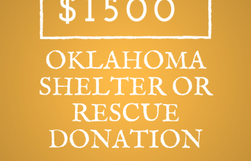 $1500 Oklahoma Rescue or Shelter Contest