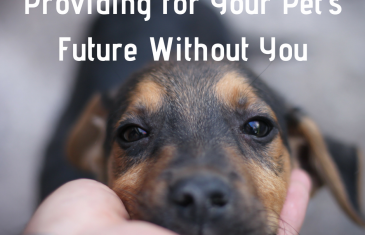 Providing for Your Pet's Future Without You