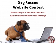 Dog Rescue Website Contest!
