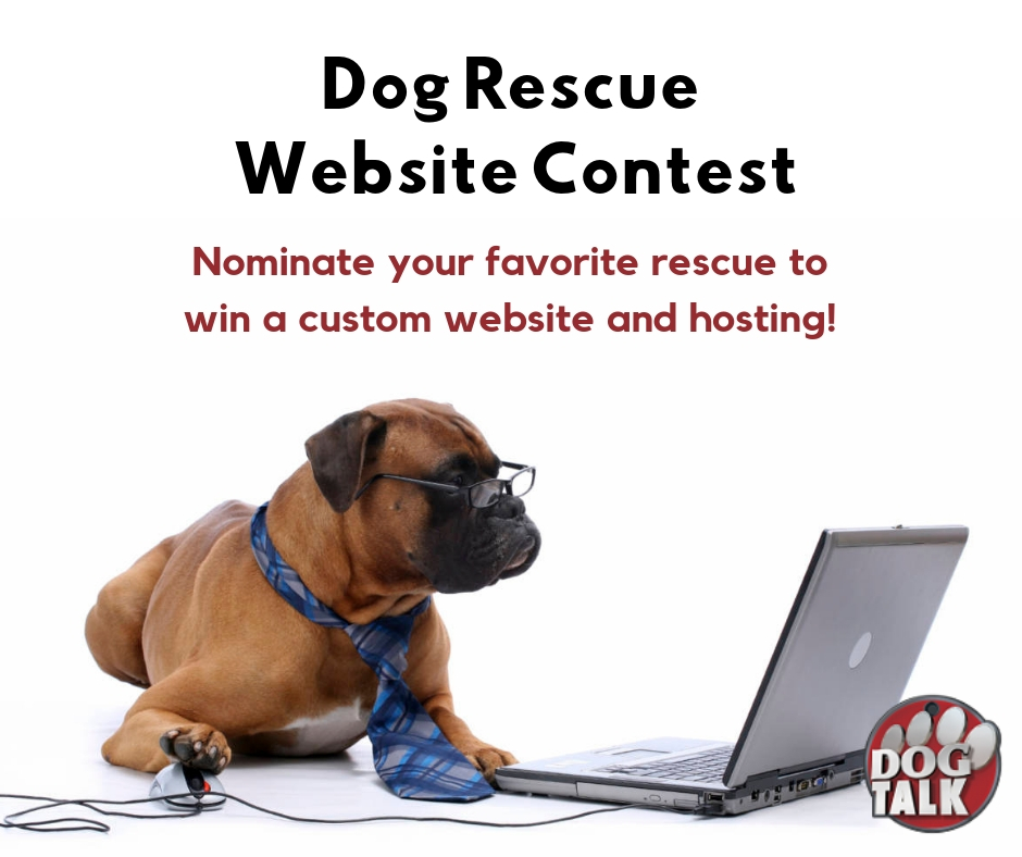 Dog Rescue Website Contest!