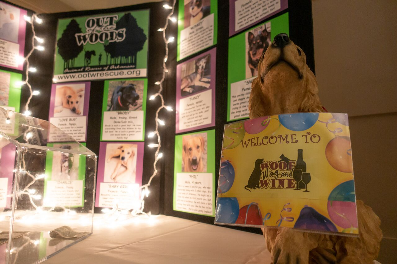 How to Create a Really Successful Pet Rescue Event