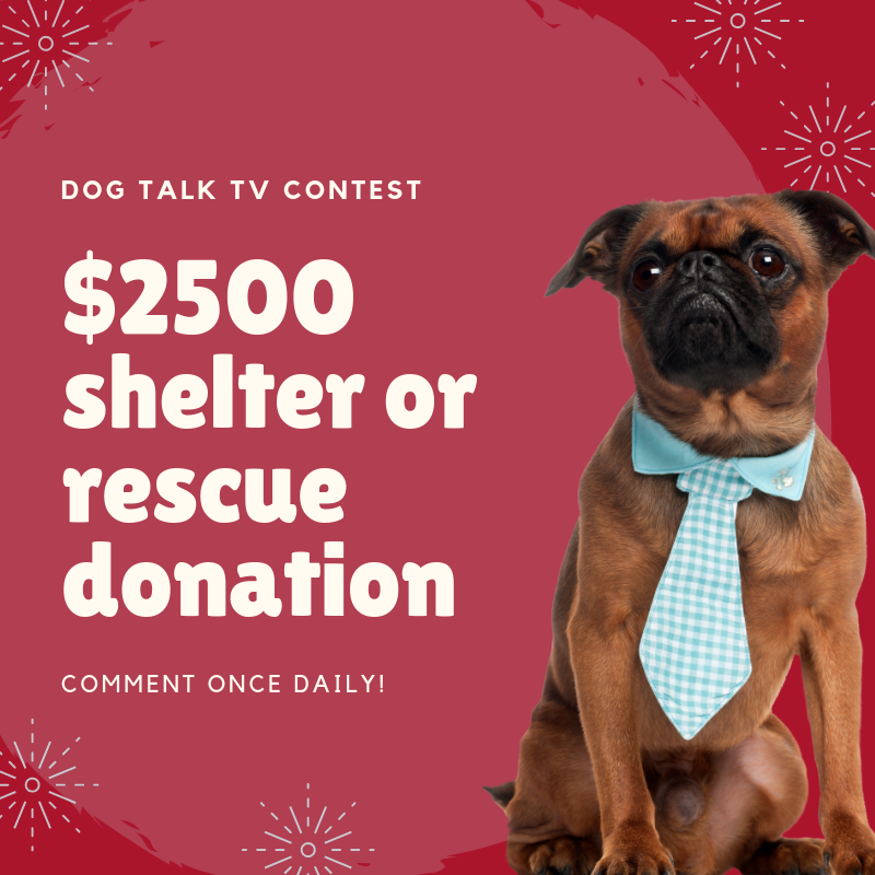 $2500 shelter or rescue donation